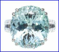 Rare 13.59 Carat Paraiba Tourmaline Beautiful Design 925 Solid Real Silver Ring